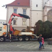 I letos pomáhal námi dodaný HNJ Fassi  s Vánočním stromkem.